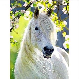 WAZHCY Malen nach Zahlen weißes Pferd Tier mit Bürsten für für für Erwachsene Kinder Anfänger Fantasy Home Decoration-with Frame B07Q2GP226  Praktisch und wirtschaftlich c4751b