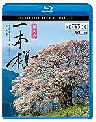 日本の一本桜 4K撮影作品 [Blu-ray Disc]