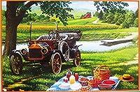 大人と子供のための数字によるDIYペイント初心者のためのキャンバス油絵キット川のそばのホームピクニックのための芸術と工芸品40x50cmフレームレス