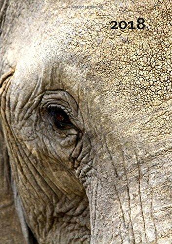 großer Jahresplaner 2018 - Elefant Eye - DIN A4: 365 Tage = 365 A4-Seiten