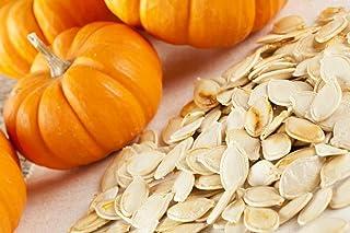Jack Be Little Pumpkin Seeds, 10 Heirloom Seeds Per Packet, Non GMO Seeds, Isla's Garden Seeds
