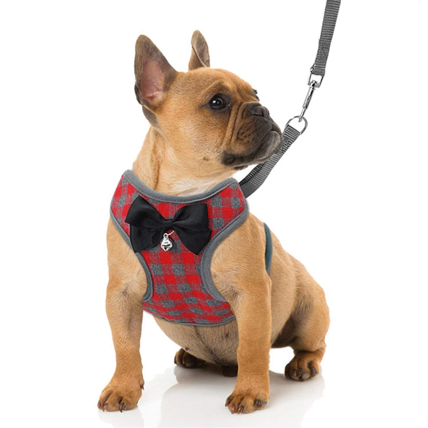 RYPET Small Dog Harness Leash