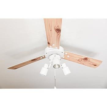 Ventilador de techo con iluminación y interruptor de cordón Cyrus ...