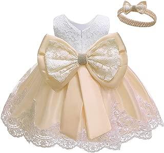 LZH Girls Dress Tulle Flower Lace Wedding Princess Dress for Baby Toddler