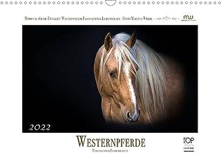 Westernpferde - Faszination und Leidenschaft (Wandkalender 2022 DIN A3 quer): American Quarter Horses ... 13 wundervolle B...