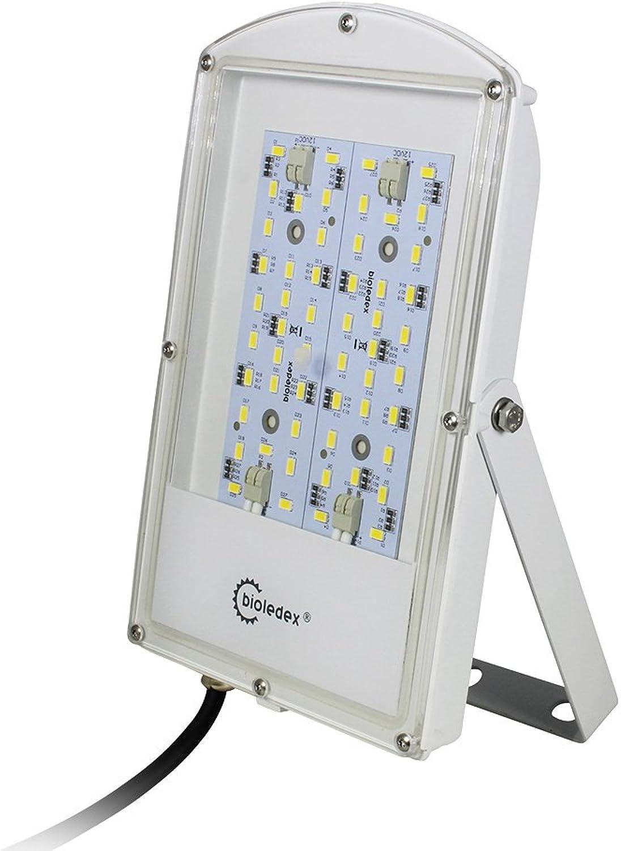 Bioledex ASTIR LED Fluter 12VDC 28W 2400Lm 120° 3000K