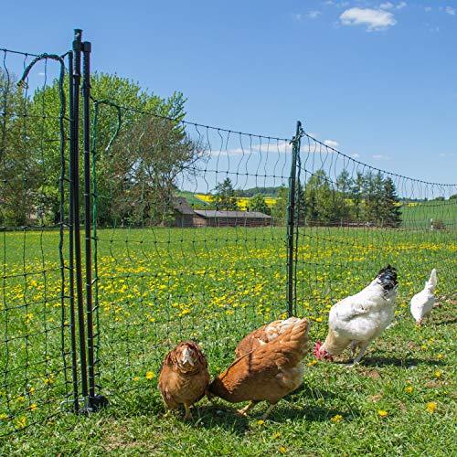 Tor für Geflügelnetz, grün, 105 cm hoch - 125 cm lang, Geflügelnetz, Geflügelzaun, Elektrozaun