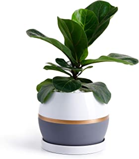"""Potey Ceramic Planter Flower Plant Pot - 5.1"""" with Drain Hole Saucer-Enough Space - Modern Decorative for Indoor Planters-White with Gold and Grey Detailing"""