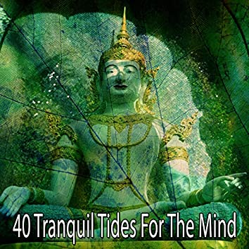 40 Tranquil Tides for the Mind