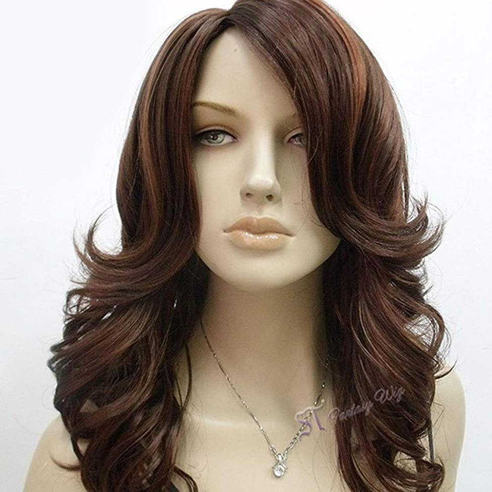 トリッキー縞模様の書道BOBIDYEE 女性の長い巻き毛のかつら茶色のセクシーな長い前髪波カールかつら合成髪のレースのかつらロールプレイングかつら (色 : ブラウン)