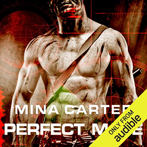 Perfect Mate audiobook cover art