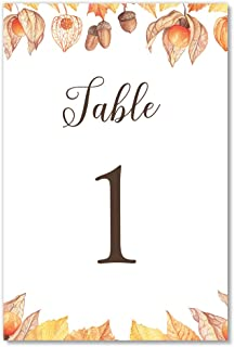Classic Autumn Table Numbers 25 Pack Acorns & Leaves Single Sided 4