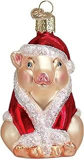 Best christmas ham ornament Reviews