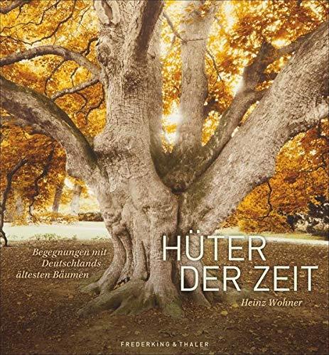Hüter der Zeit: Begegnungen mit Deutschlands ältesten Bäumen