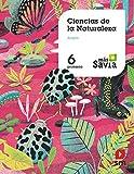 Ciencias de la naturaleza. 6 Primaria. Más Savia. Aragón