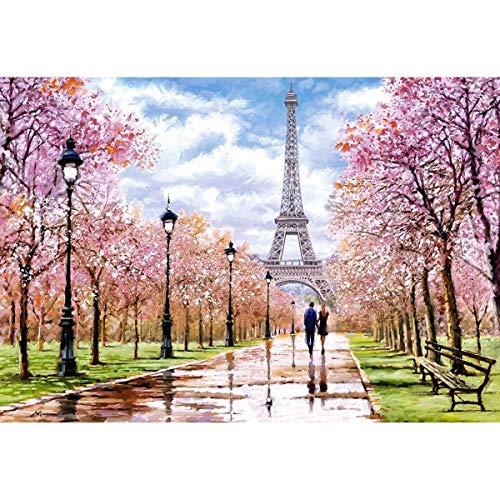 Castorland C-104369-2 Romantic Walk in Paris 1000 Teile Puzzle, Bunt
