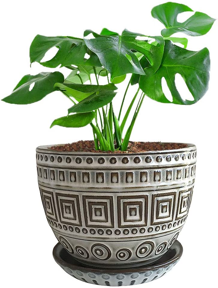 maceta para hierbas maceta para plantas maceta para suculentos estilo vintage Maceta de hierbas de color blanco cinc Macetero MACOSA NO55769 de 4 piezas jard/ín de hierbas