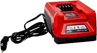 Amazon.es: motodox - Accesorios para herramientas eléctricas de exterior / Cortacéspedes y ...: Jardín