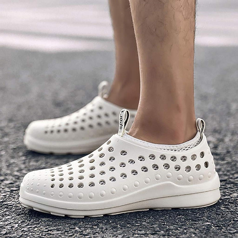 LQ Men's sandals Breathable mesh beach shoes, summer baotou hole shoes, EVA non-slip wear-resistant multi-color optional shoes (color   C, Size   39)
