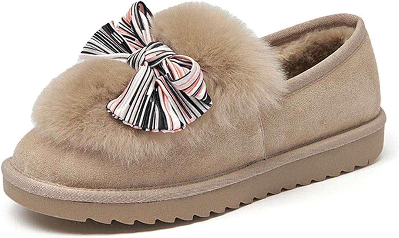 Light Snow Boots Women's shoes Fashion Velvet Booties Walking shoes Warm Velvet Slow-Motion shoes & Handbags (color   Brown, Size   40)