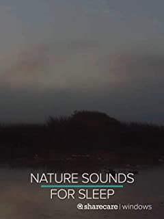 Nighttime Nature Sounds for Sleep 9 Hours