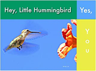 Hey, Little Hummingbird, Yes, You