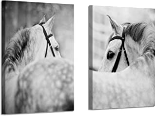 Best artistic pictures of horses Reviews