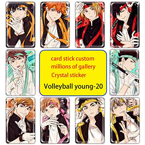 AMOLEY 10 PCS Set Haikyuu!! Stickers,Anime PVC Graffiti Decals for Laptop Luggage Bottle Decor,Best Gift for Teens Adults(Style4)