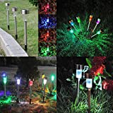 RockTric Solar LED Landscape Lights for Outdoor Path 10pcs - Colorful Sun Powered Yard Lights for Garden, Ground Path, Walkway, & Driveway, 10 Pack