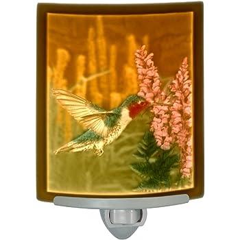 Hummers Choice Curved Lithophane Hummingbird Nightlight The Porcelain Garden NR204