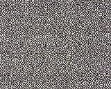 Jersey Stoff mit Animalprint in Schwarz/Weiß als Meterware