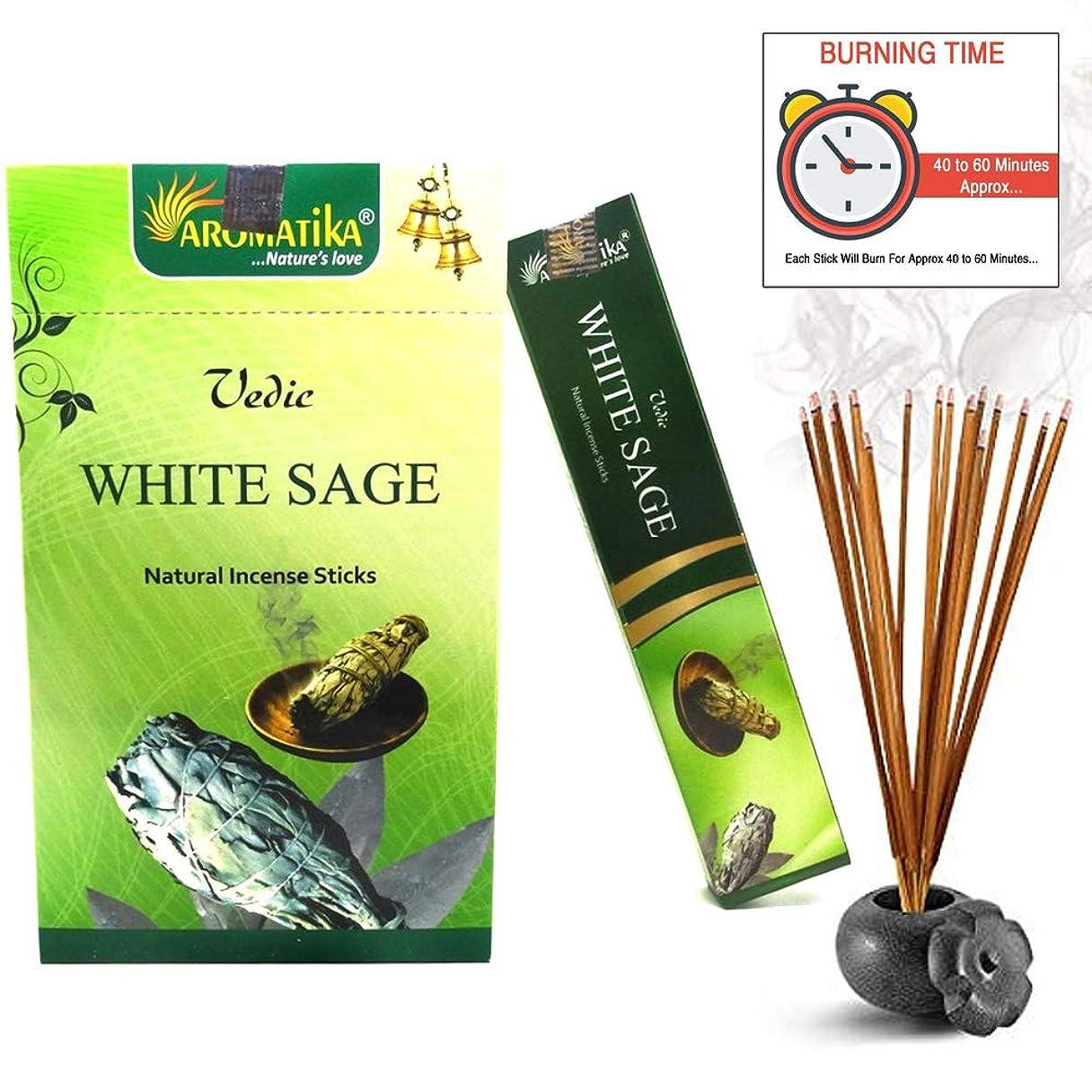 恵みモスクと遊ぶaromatikaホワイトセージ15?gms Masala Incense Sticks Pack of 12