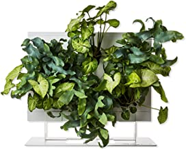 Hoh. + mesa apoyo por ortisgreen, jardín Vertical Boxe en color blanco (plástico ABS) y soporte para mesa en whitetwo Hoh., sustrato natural y instrucciones incluidas