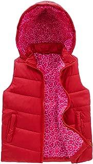 Girls Puffer Vest Quilted Sleeveless Jacket Winter Hood Coat Print Lined Zip Up Waistcoat Warm