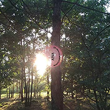 33 оборота вокруг солнца