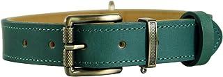 Tellpet Italy Full-Grain Leather Padded Dog Collar M, Neck(13-16 IN) padded collar-Malachite Green-M
