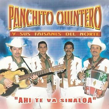 """""""Ahi Te Va Sinaloa"""""""