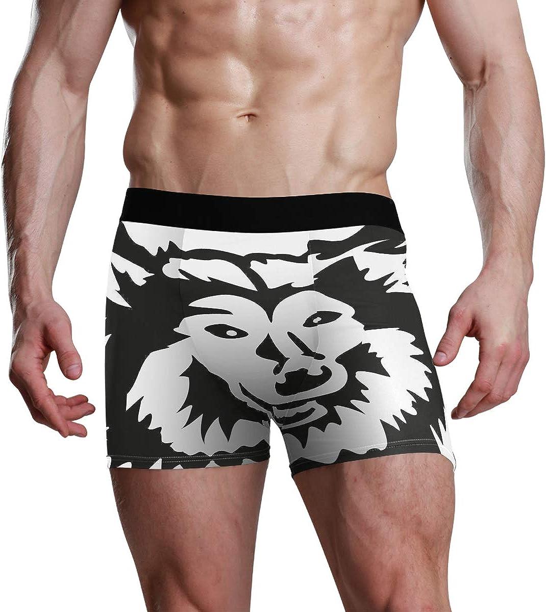Mens Boxer Briefs Underwear Rough Collie Head Trunks Underwear Short Leg Boys