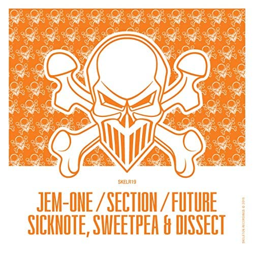 sicknote, Jem-One, The Section & Future
