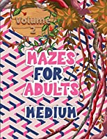Mazes for adults: Volume 2 with mazes gives you hours of fun, stress relief and relaxation!
