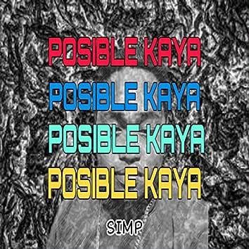Posible Kaya