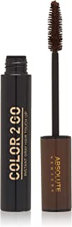 Absolute New York Color 2 Go Instant Gray Hair Touch up Mascara 0.45 Oz (HM 03 Dark Brown) by ABSOLUTE NEW YORK