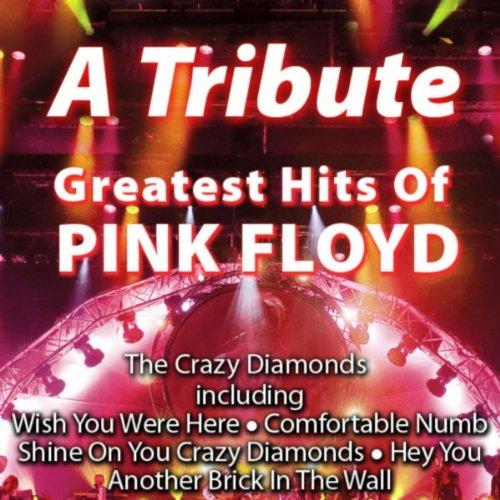 Amazon com: Comfortable Numb: The Crazy Diamonds: MP3 Downloads