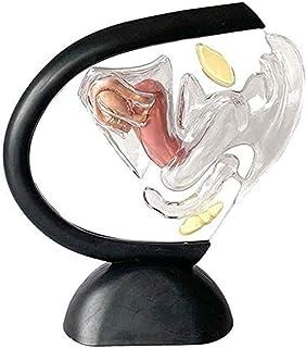 アクセサリーにモデルヒトの臓器、子宮、子宮内膜見える構造、医学研究の透明モデルを学びます