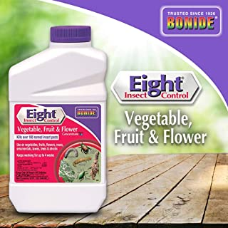 Best tomato insect control Reviews