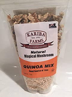 Magical Mushroom - All Natural -10 oz resealable bag