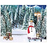 Allenjoy 10x8ft Fabric Winter Forest Landscape Photography Backdrop Supplies Christmas New Year Birthday Party Home Decorations Snowman White Snowy Studio Newborn Children Portrait Photoshoot Props