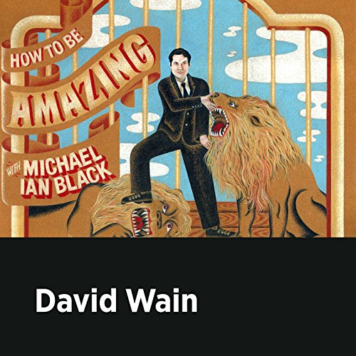 David Wain audiobook cover art