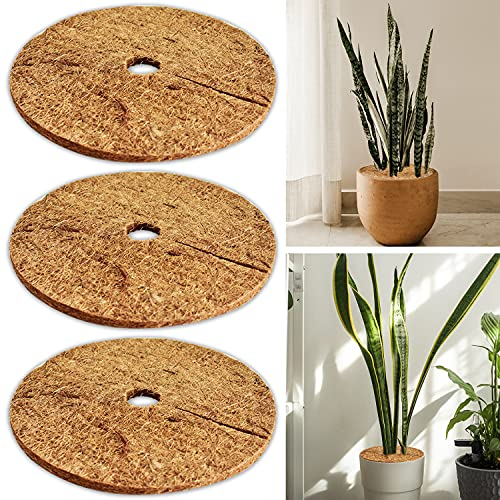 ZeeDix 3 Pcs Coconut Fibers Mulch Ring Tree Protector Mat,11.8 Inch 100% Natural Coco Coir Tree Protection,Tree Ring Mats Tree Disc Plant Cover for Indoor or Outdoor