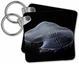 3dRose Tennessee, Chattanooga. Moon Jellyfish In Aquarium 01 - Llaveros, 5,7 x 5,7 cm, juego de 2 (kc_251418_1)